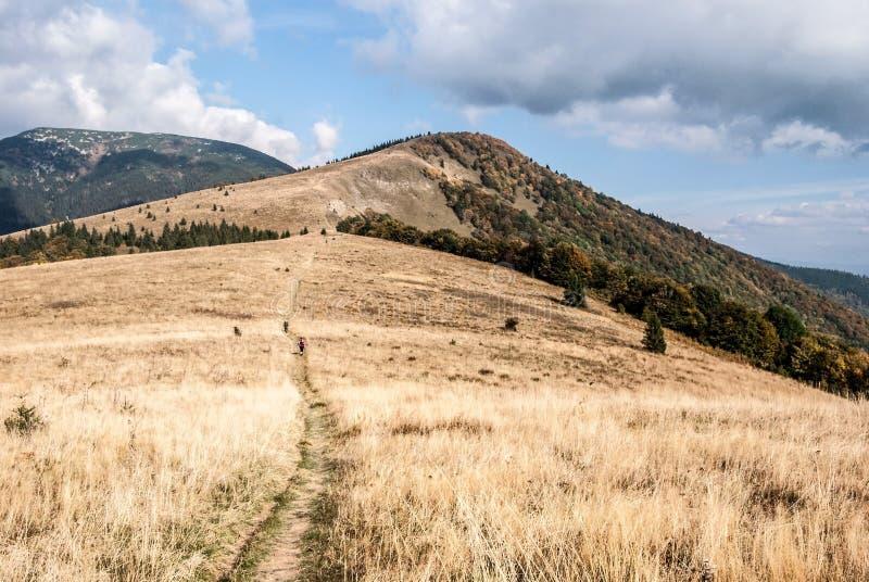 Il prato della montagna, il chrbat di Kozi e le colline di Prasiva vicino a Donovaly ricorrono in Slovacchia fotografia stock libera da diritti