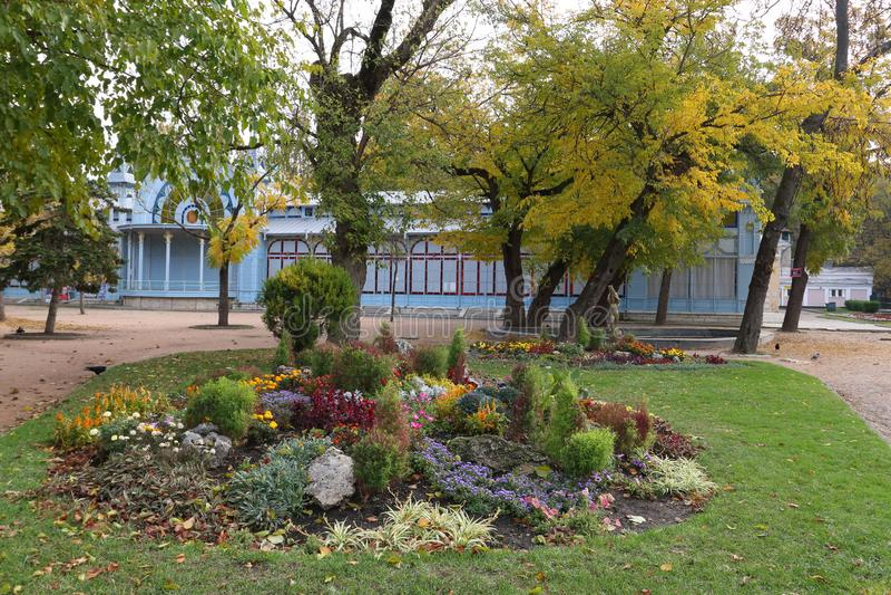 Il prato inglese ed il letto di fiore decorativo in Tsvetnik parcheggiano Pjatigorsk, Russia fotografia stock libera da diritti