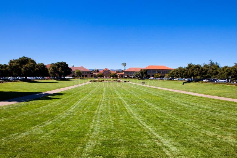 Il prato inglese in Stanford U.S.A. fotografia stock