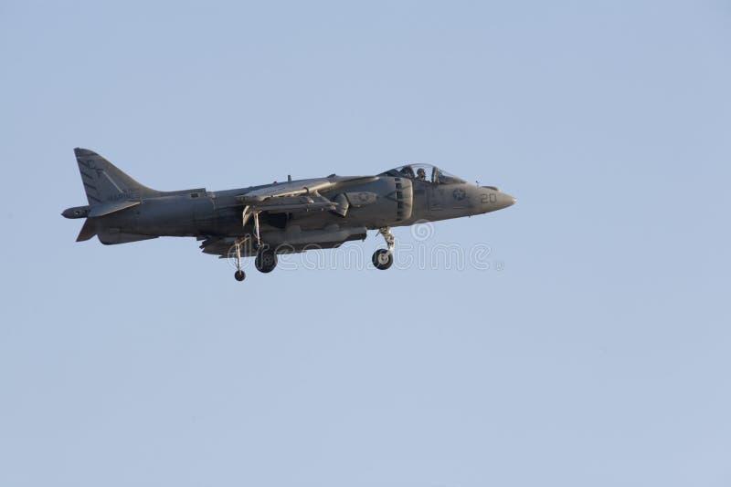 Il predatore salta il jet fotografia stock libera da diritti