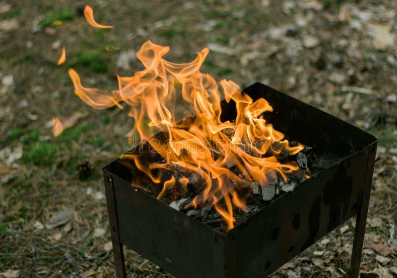 Il primo barbecue della molla fotografia stock libera da diritti