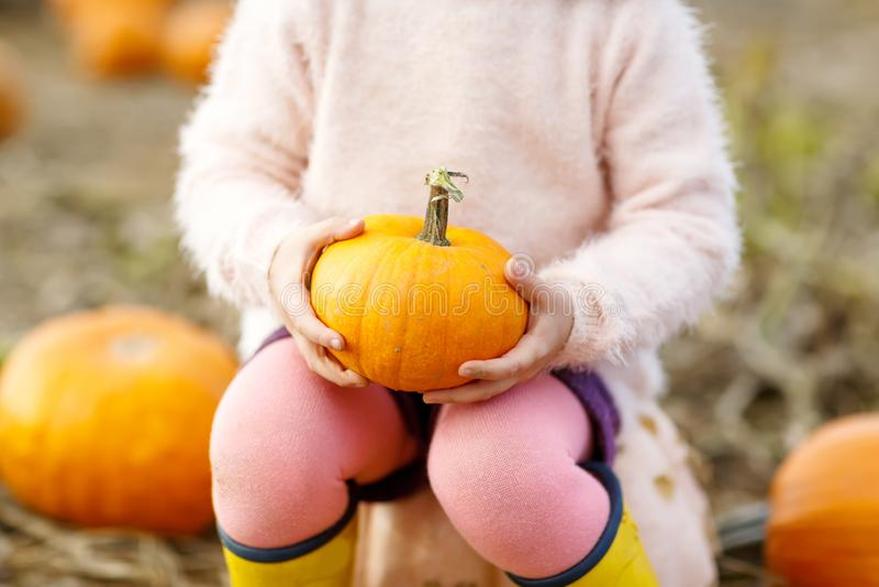 Il primo piano dei bambini passa la tenuta della zucca arancio sulla toppa fotografie stock