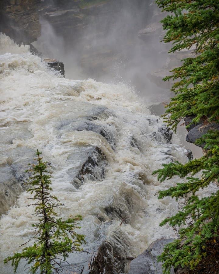 Il primo piano dell'acqua che circola su Athabasca cade in Jasper National Park nel Canada fotografie stock