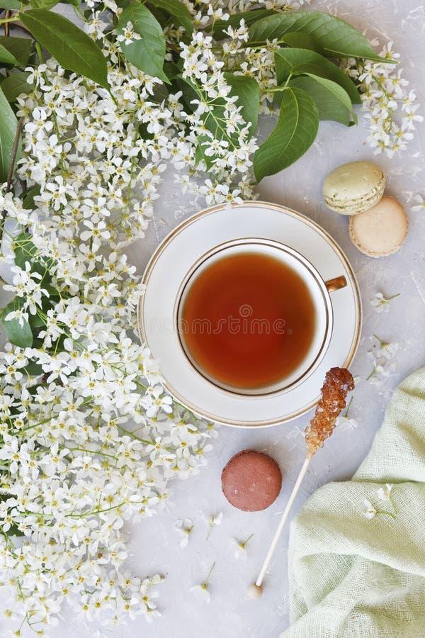 Il primo piano della tazza calda di tè con i maccheroni dolci circondati da bello di melo di fioritura bianco si ramifica su un f immagini stock libere da diritti