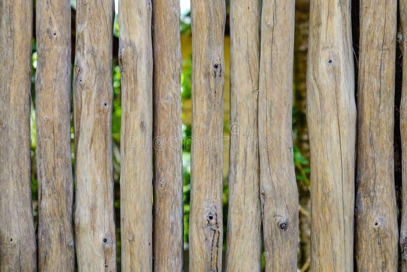 Il primo piano di di legno recinta una località di soggiorno tropicale immagine stock