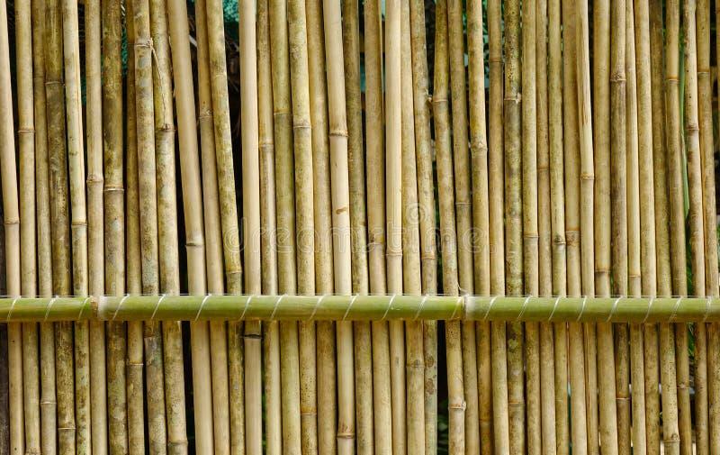 Il primo piano di di legno recinta una località di soggiorno tropicale immagini stock libere da diritti