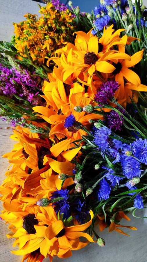 Il primo piano di un mazzo dei wildflowers si trova su una tavola, concetto dell'estate, rudbeckia, fiordaliso, chamaenerion, are fotografia stock