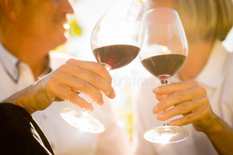 Il primo piano ha sparato delle coppie senior che bevono il vino rosso immagini stock libere da diritti