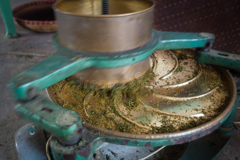 Il processo di fabbricazione del tè fotografia stock