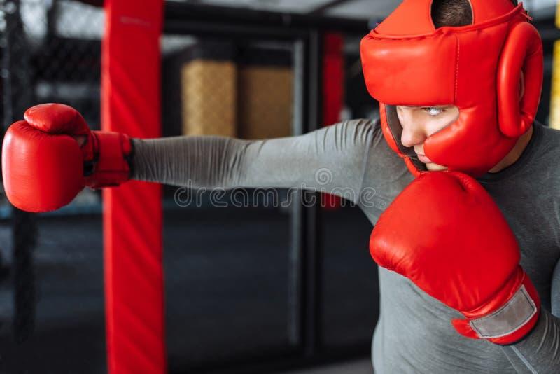 Il pugile maschio si è impegnato nell'addestramento nella palestra, in una gabbia per una lotta senza regole, vettura di pugilato fotografie stock libere da diritti