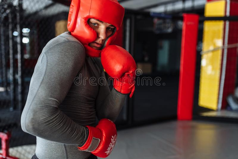 Il pugile maschio si è impegnato nell'addestramento nella palestra, in una gabbia per una lotta senza regole, vettura di pugilato fotografia stock