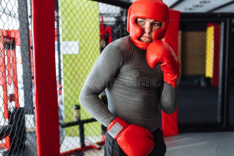 Il pugile maschio si è impegnato nell'addestramento nella palestra, in una gabbia per una lotta senza regole, vettura di pugilato immagini stock libere da diritti
