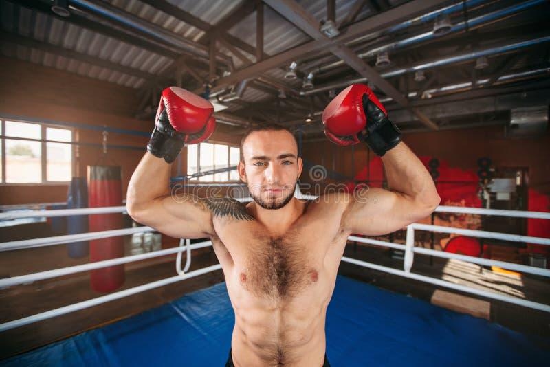 Il pugile mostra i muscoli immagini stock