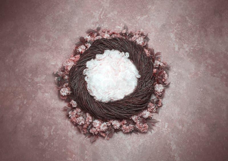 Il puntello della foto del fondo di fantasia del nido dell'uccello con la vite ed i fiori è immagine stock libera da diritti