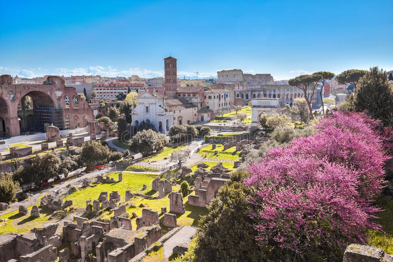 Il punto di riferimento di Roman Forum di Roma in Italia fotografia stock libera da diritti