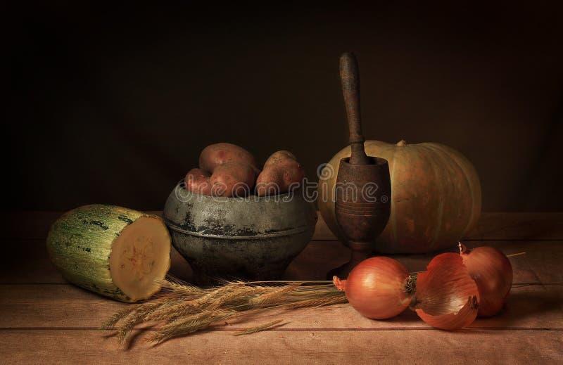 Il raccolto delle verdure fotografie stock libere da diritti
