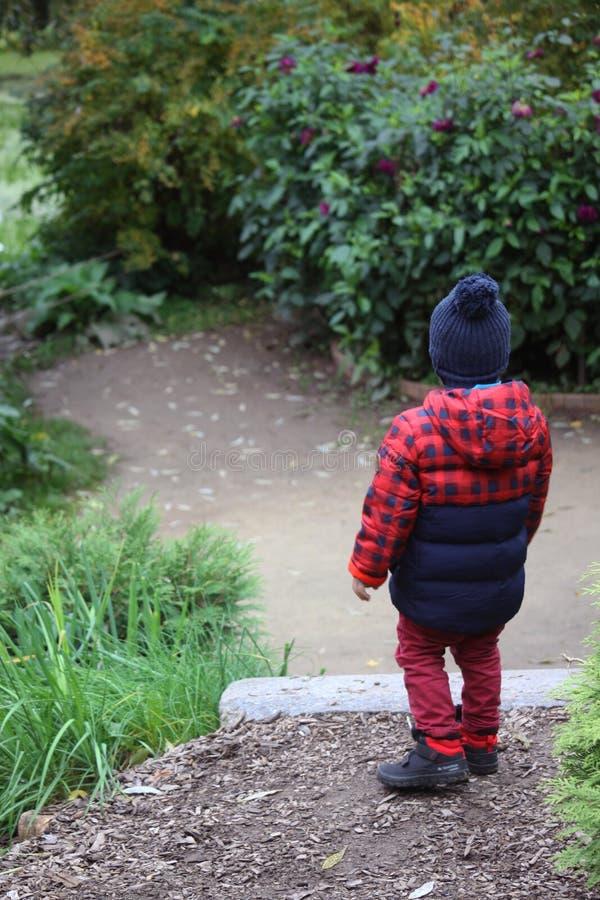Il ragazzino fotografia stock libera da diritti