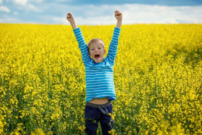 Il ragazzino che salta per la gioia su un prato in un giorno soleggiato fotografie stock