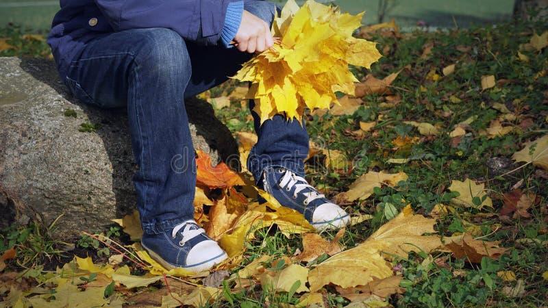 Il ragazzino che si siede sul ceppo nel parco di autunno, all'aperto tenente il mazzo di giallo lascia in mani fotografie stock