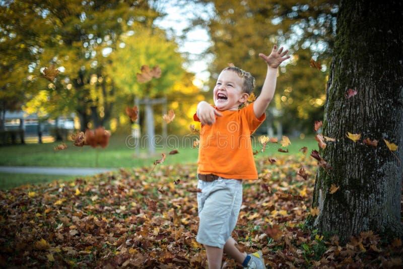 Il ragazzino felice si diverte il gioco con le foglie dorate cadute immagini stock libere da diritti
