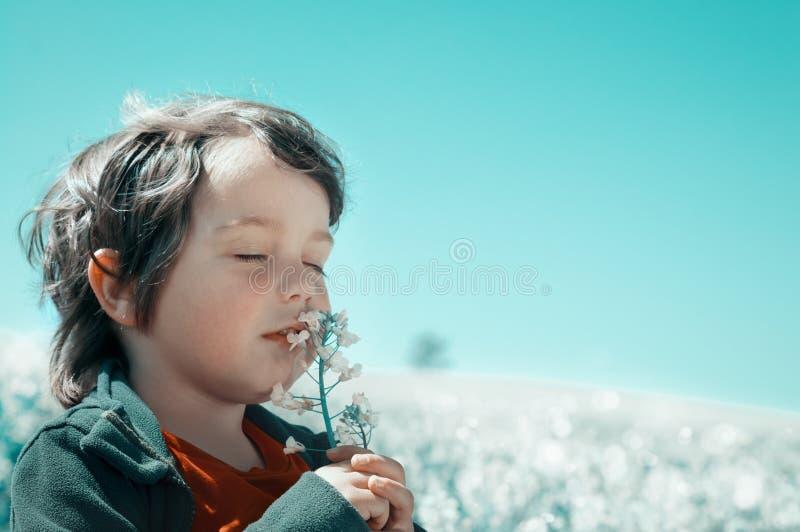 Il ragazzino fiuta un fiore fotografie stock