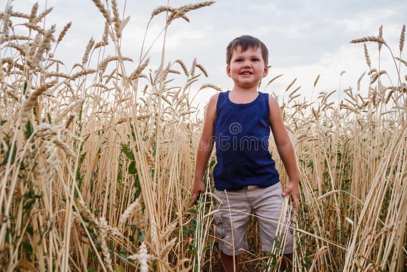 Il ragazzino funziona su un giacimento di grano immagini stock