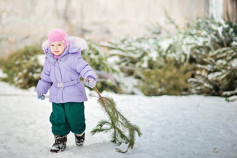 Il ragazzino porta un albero di Natale con il vagone rosso Il bambino sceglie un albero di Natale immagini stock
