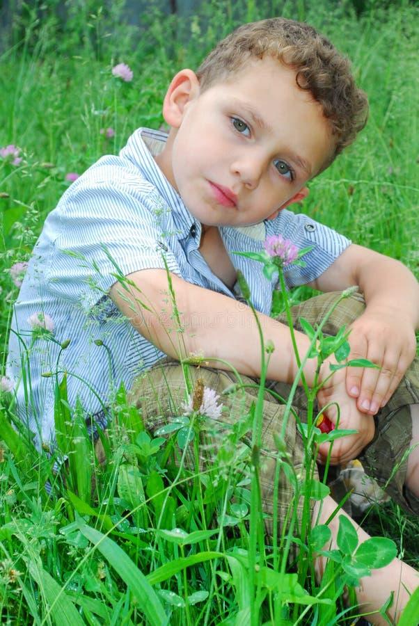 Il ragazzino si siede su un prato inglese del trifoglio. fotografia stock