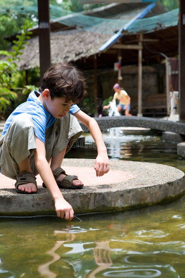 Il ragazzo attende affinchè i piccoli pesci nuoti nella sua rete, fotografia stock libera da diritti