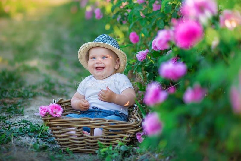 Il ragazzo biondo sveglio del bambino sta sedendosi la merce nel carrello dei fiori che stanno nel campo rosa rosa Il vestito ed  fotografia stock libera da diritti