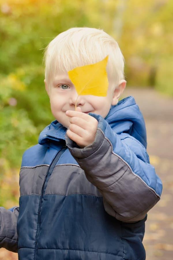 Il ragazzo biondo tiene una foglia gialla lui Ritratto immagini stock libere da diritti