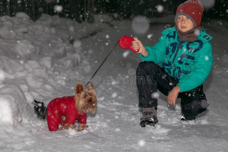 Il ragazzo cammina con il cane nell'inverno alla notte fotografia stock