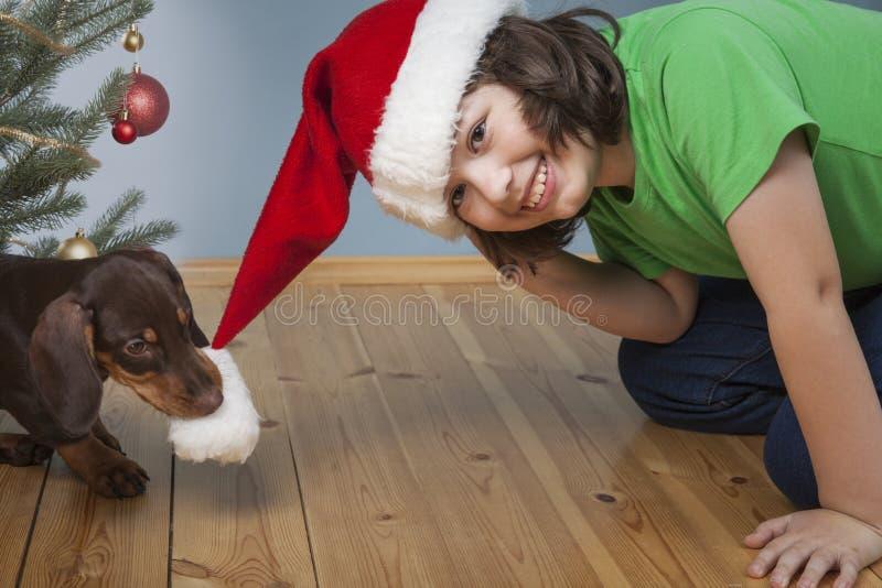 Il ragazzo che gioca con il cane vicino all'abete di Natale, il cane è pul immagini stock libere da diritti