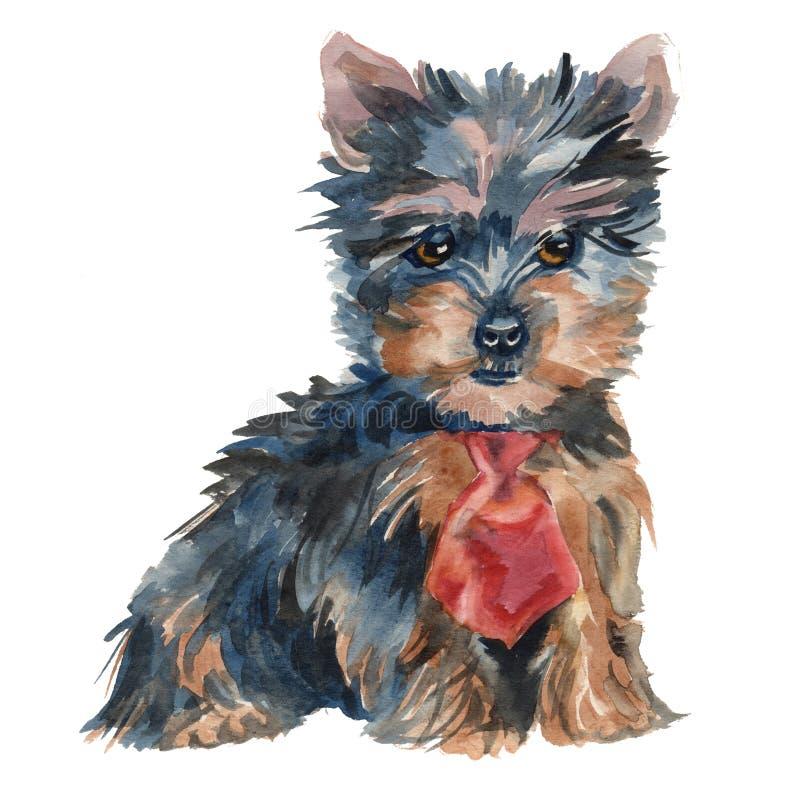 Il ragazzo del cucciolo dell'Yorkshire terrier illustrazione di stock