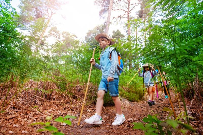 Il ragazzo ed altri bambini camminano sulla traccia di escursione della foresta immagini stock libere da diritti