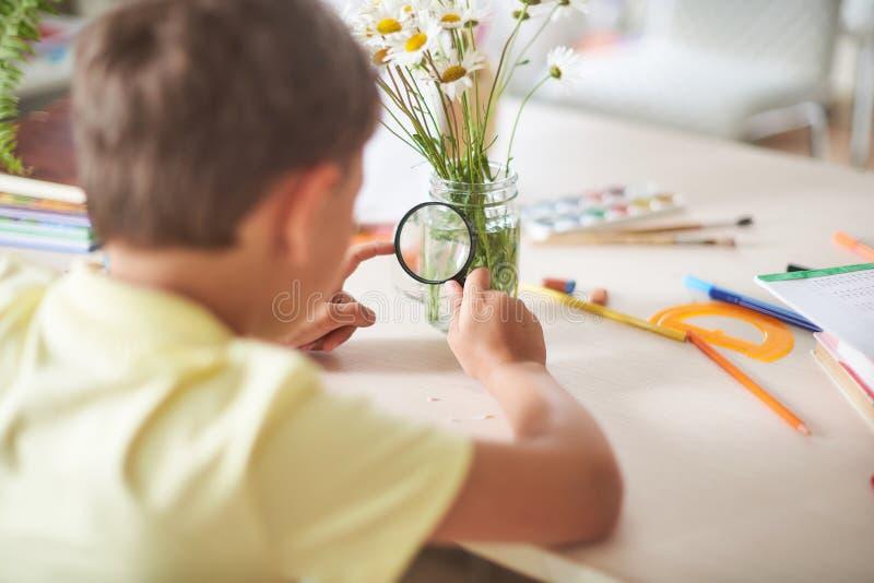 Il ragazzo fa il suo compito a casa bambino felice alla tavola con i rifornimenti di scuola che considera attraverso un fiore del fotografie stock