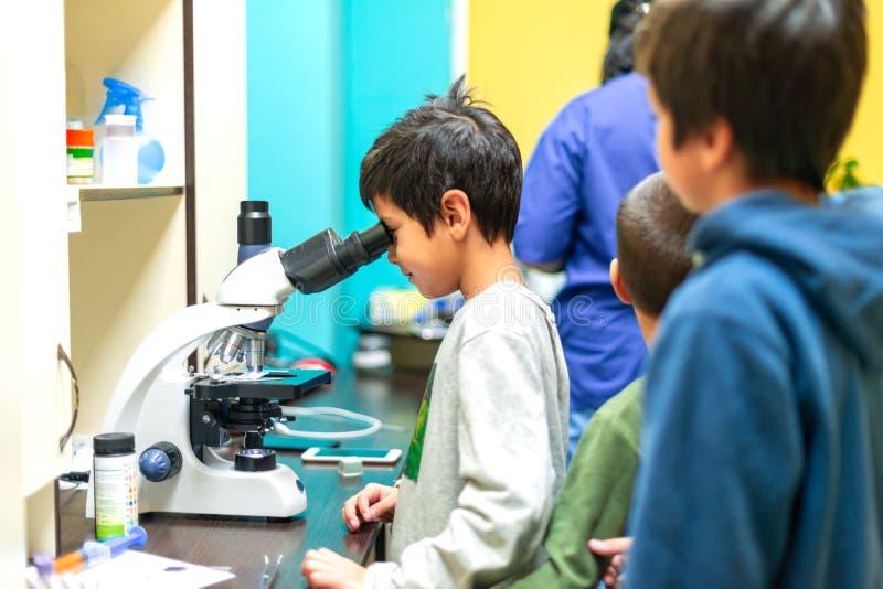 Il ragazzo guarda attraverso un microscopio in un laboratorio con curiosità I bambini hanno fatto un'escursione in clinica fotografia stock libera da diritti