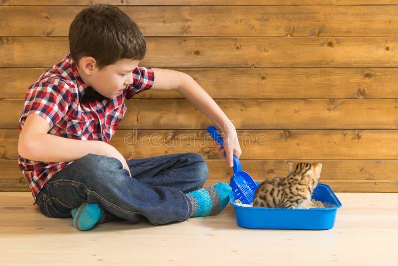Il ragazzo insegna al piccolo gattino a andare alla toilette e lo rimuove dopo lui fotografie stock
