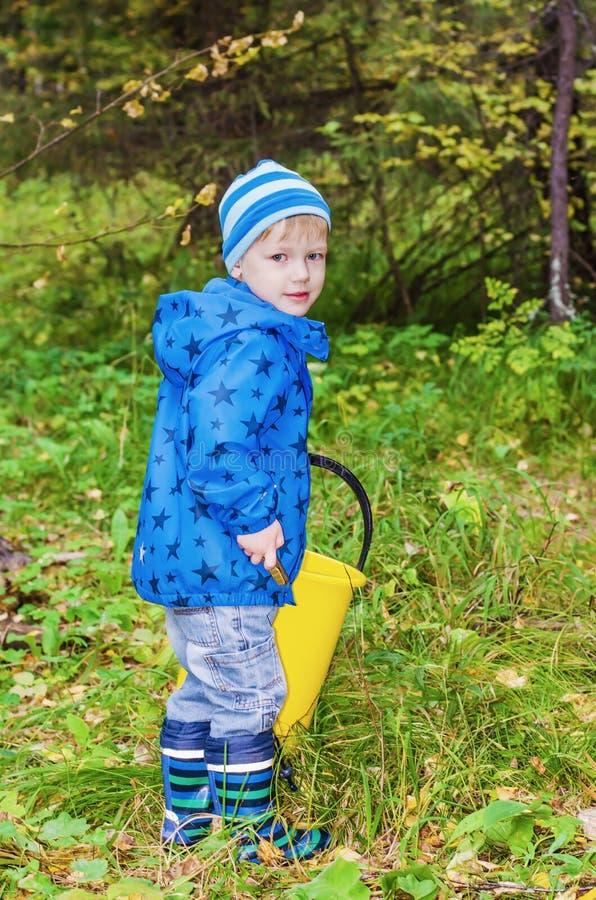 Il ragazzo riunisce i funghi nella foresta immagini stock libere da diritti