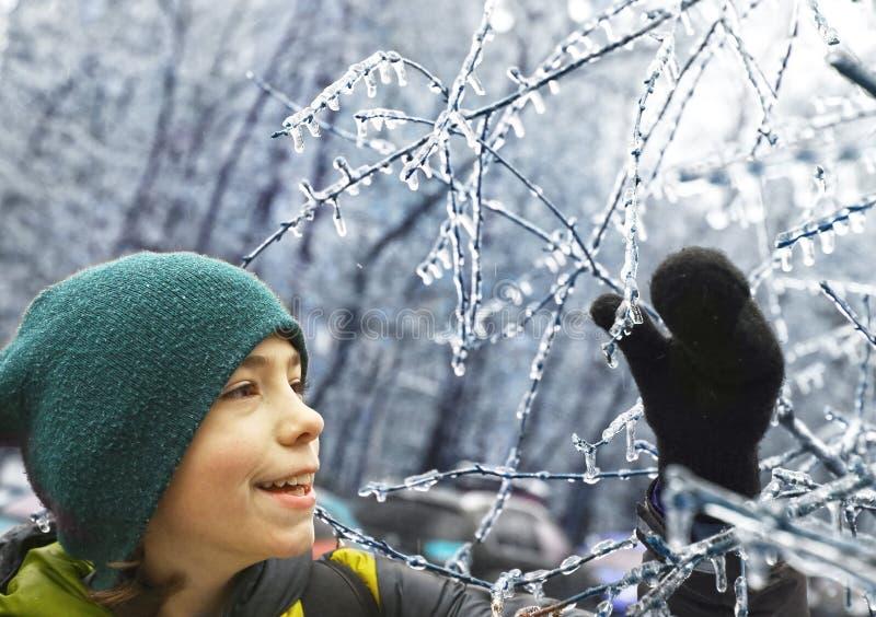 Il ragazzo si diverte con congelato nei rami di albero del ghiaccio immagine stock libera da diritti