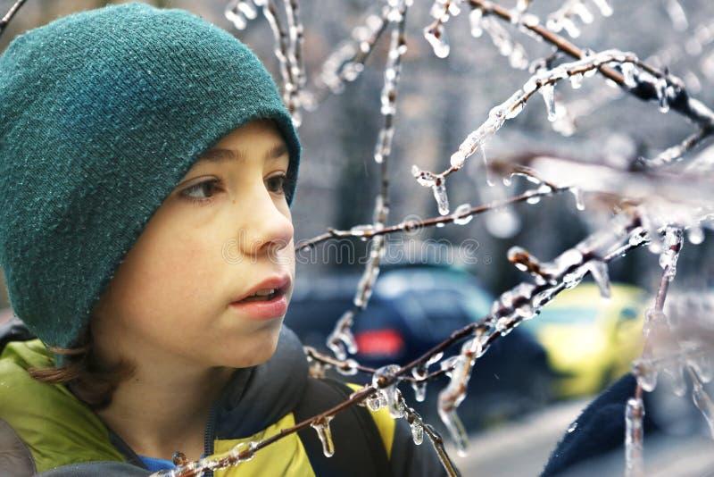 Il ragazzo si diverte con congelato nei rami di albero del ghiaccio immagini stock