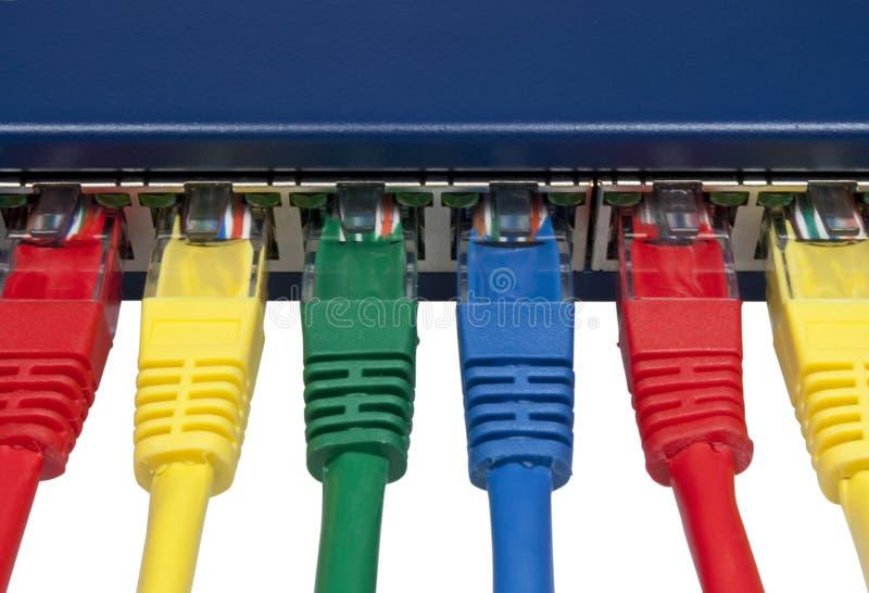 Il Rainbow ha colorato le spine connesse della rete di calcolatore fotografia stock