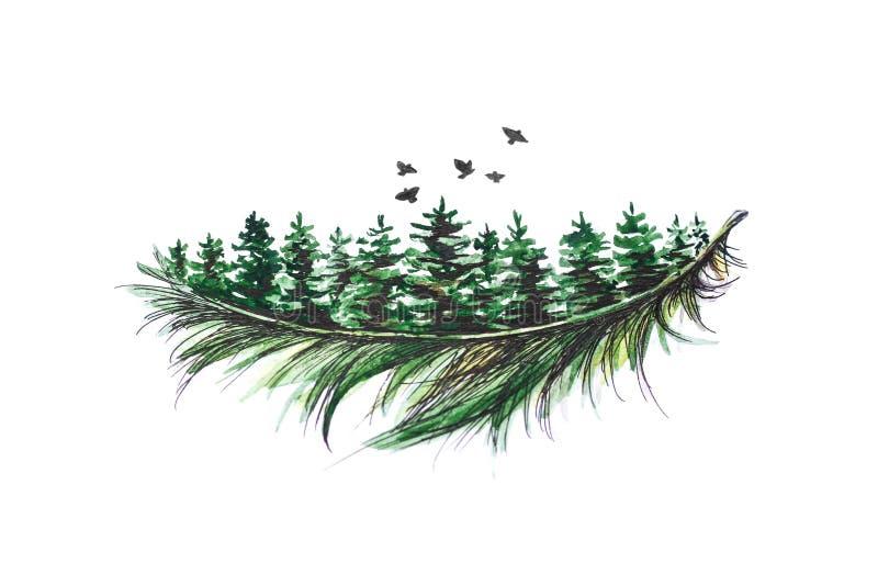 Il ramo conifero verde è dipinto con una penna e un acquerello neri Fine in su Isolato su priorità bassa bianca illustrazione vettoriale