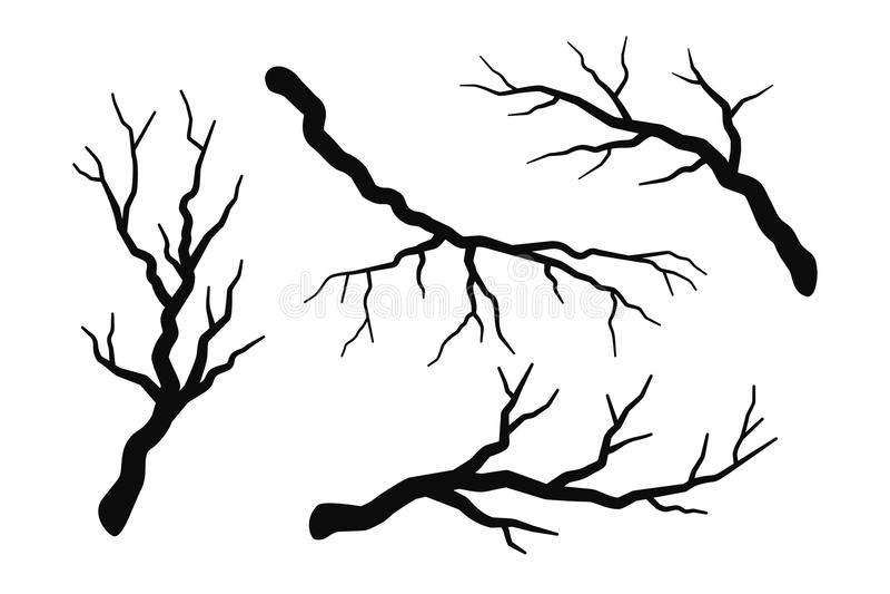 Il ramo di albero senza siluette delle foglie ha messo isolato su bianco fotografia stock libera da diritti