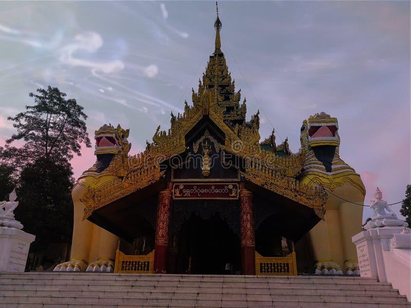 Il re leone del Myanmar immagini stock libere da diritti