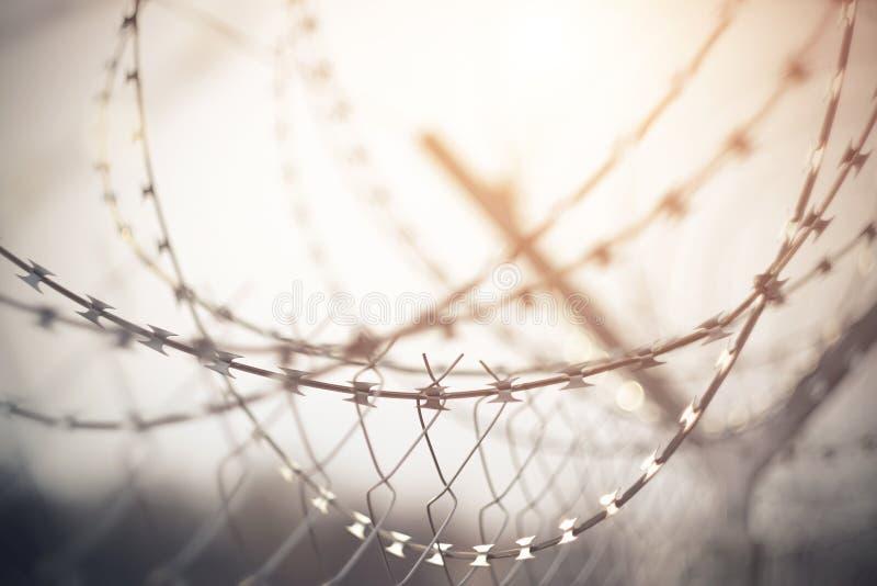 Il recinto sopra il filo spinato a spirale arrotolato, una lama tagliente che riflette la luce di mattina fotografia stock