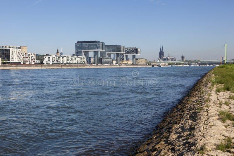 Il Reno in Colonia, Germania fotografie stock