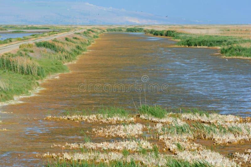 Il rifugio del fiume dell'orso trascura - l'Utah centrale del nord fotografia stock