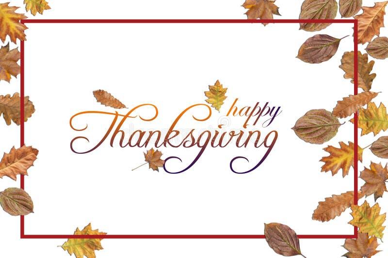 Il ringraziamento felice con le foglie colorate ed il rosso rasentano il bianco immagini stock libere da diritti