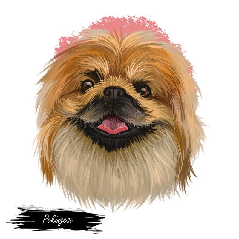 Il ritratto del cane di pechinese ha isolato Arte di Digital per il web, la stampa della maglietta e la progettazione della coper royalty illustrazione gratis
